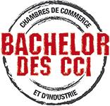 logo-bachelor-des-cci