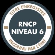 Pictogramme RNCP niveau 6